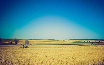 Agriculture-Farm-Livestock-Listings